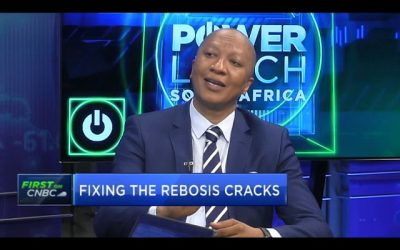 Rebosis CEO Sisa Ngebulana looks beyond annus horribilis